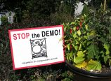 STOP the DEMO' yard signs from Neighbors for Responsible Growth are now a common sight in North and Northeast Portland neighborhooods. (Jane Perkins)