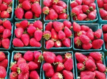 Oregon strawberries are in season now at the Lloyd Farmers Market. (Lloyd Farmers Market)