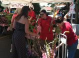 Shopping at the Hollywood Farmers Market is a great way to get to know the larger community of Portland – and to bump into your neighbors every Saturday morning. (Jane Perkins)